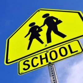 school-crossing-guard-270x270